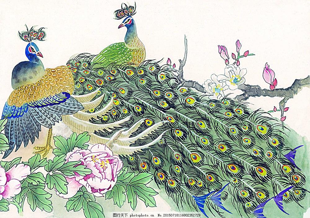两只孔雀 水彩画 水墨画 图案 文化 艺术 古代 传统 水墨花鸟