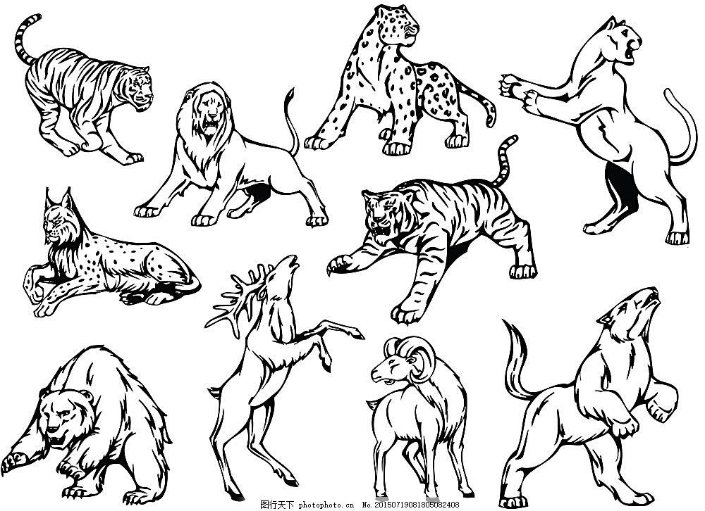 线稿 白描图 动物 野生动物园 熊 豹子 狮子 麋鹿 陆地动物 生物世界
