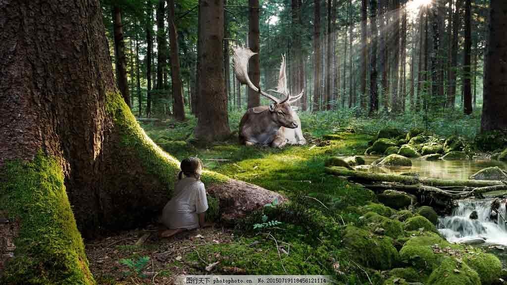梦幻森林动物背景