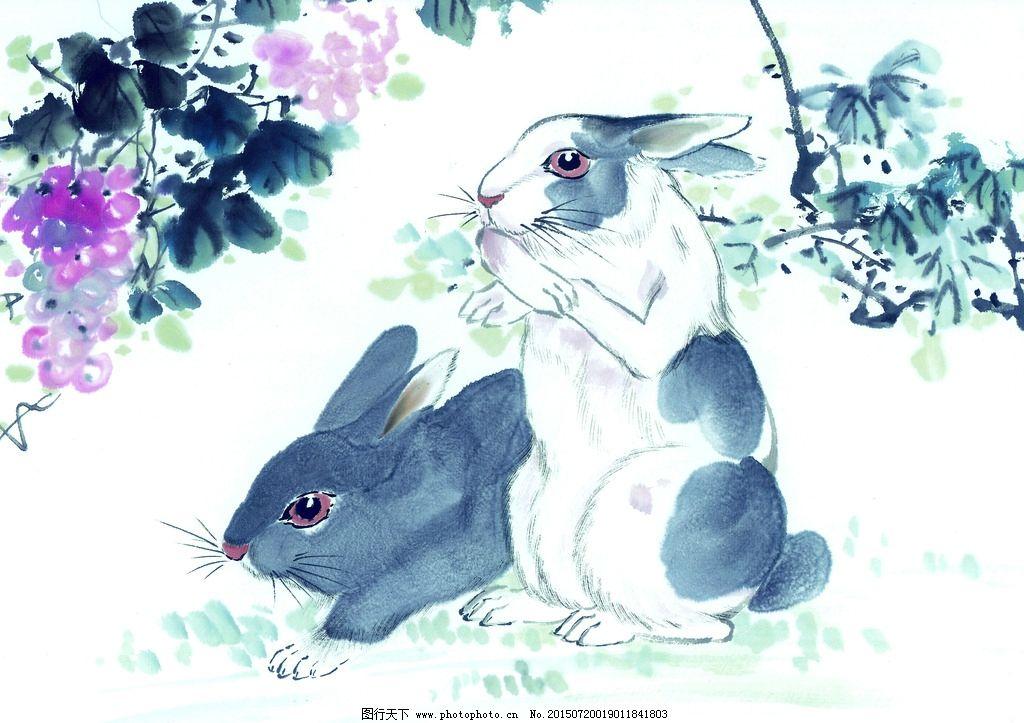 国画 手绘兔