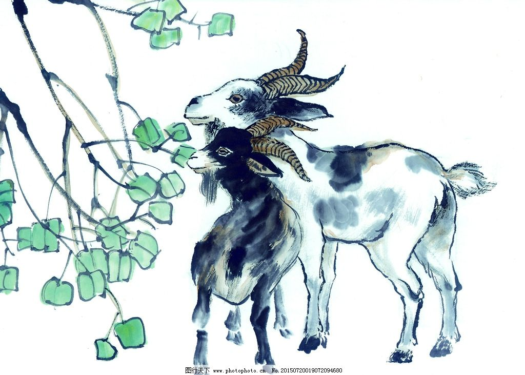 黑白 十二生肖 国画 手绘羊 山羊 羚羊 油画 装饰画 铅笔 动物 写生