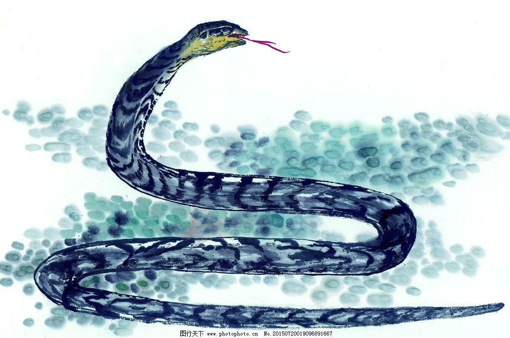 黑白 十二生肖 国画 手绘蛇 毒蛇 长蛇 蛇吐信 油画 装饰画 铅笔 动物