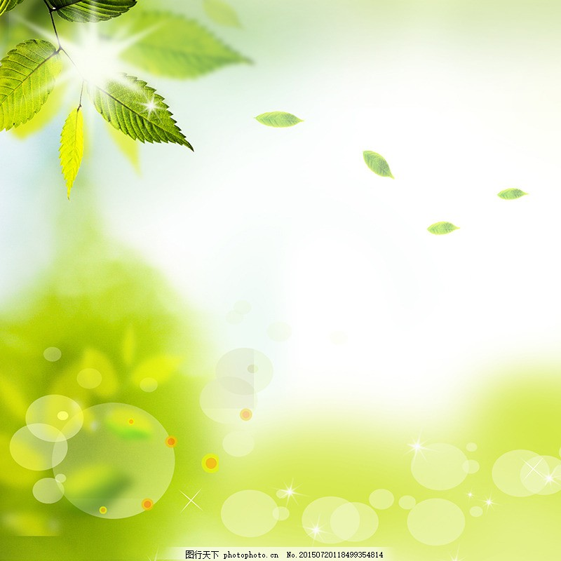 朦胧唯美大气护肤品背景 主图 广告 绿化 化妆品 小清新 茶叶图片