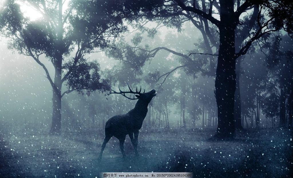 手绘鹿壁纸 森林