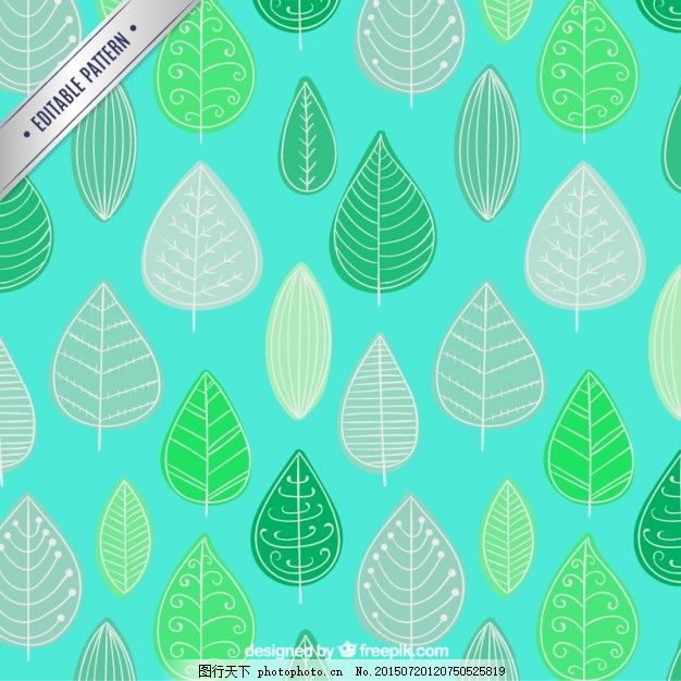 粗略的叶子图案 模式 一方面 绿色 叶 手绘 树叶 植物 绘画 手工绘图