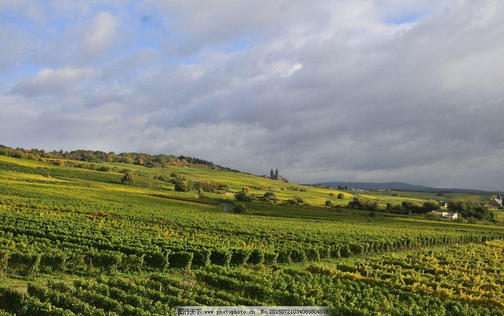 欧洲 农场 风景 农林 葡萄庄园 摄影 摄影 旅游摄影 国外旅游 300dpi