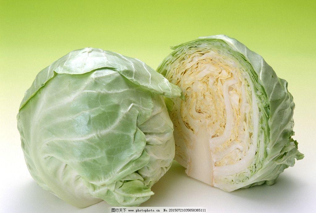卷心菜 包菜 绿色蔬菜 绿叶 绿色 菜叶 叶子 健康蔬菜 食材 蔬菜 蔬菜