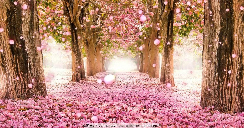 浪漫樱花 浪漫唯美 婚礼大屏视频 背景合成视频 粉色背景视频 多媒体