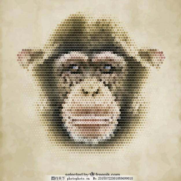 多边形的猴子 几何 动物 面 多边形 猴子 六边形 肖像 六角形 ai 黄色
