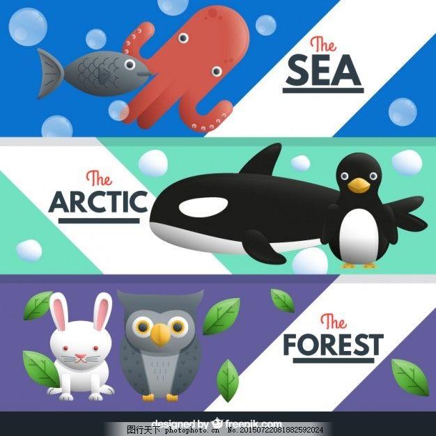 鱼 自然 海洋 动物 猫头鹰 森林 可爱 兔子 企鹅 章鱼 包 可爱的动物