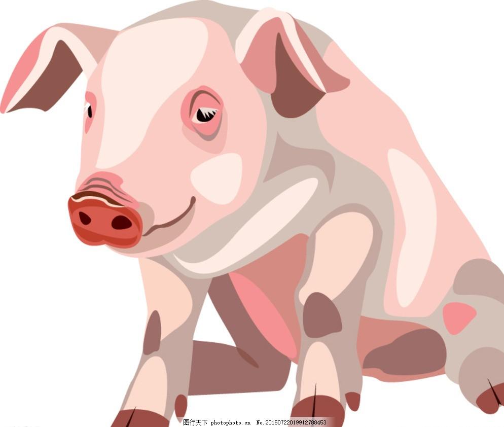 卡通猪 矢量猪 小猪 手绘猪 动物 家禽家畜 时尚卡通 卡通形象造型