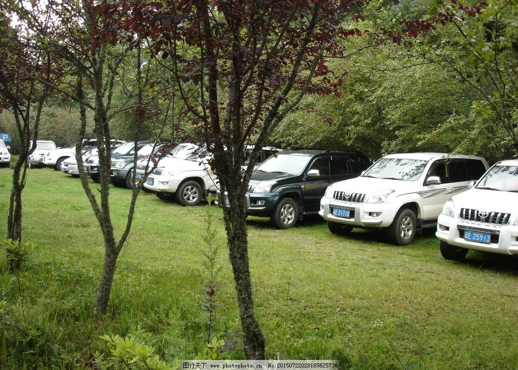 生态停车场1图片
