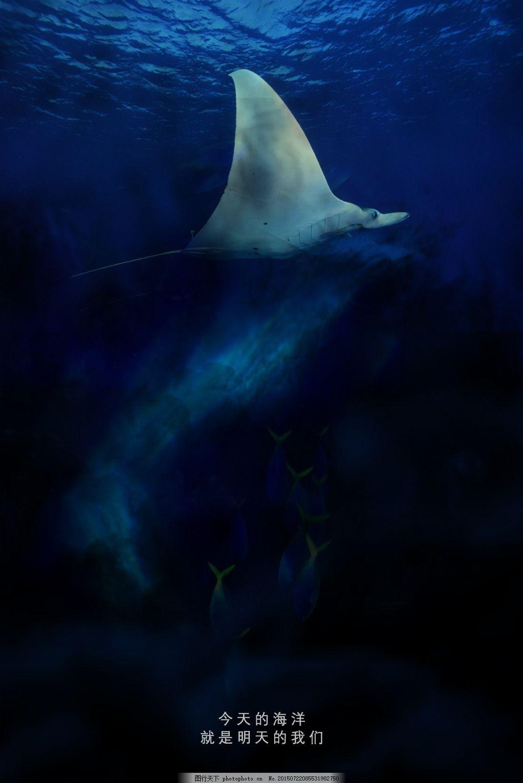 环保手工制作海洋动物