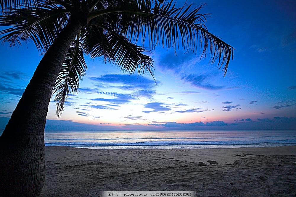 沙滩上的椰子树 海边 蓝色 黄昏 风景图片 天空云彩 自然景观
