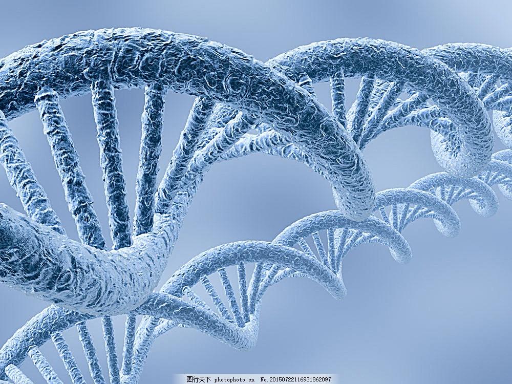 dna结构 细胞 基因 医学 医疗卫生科学 其他生物 生物世界