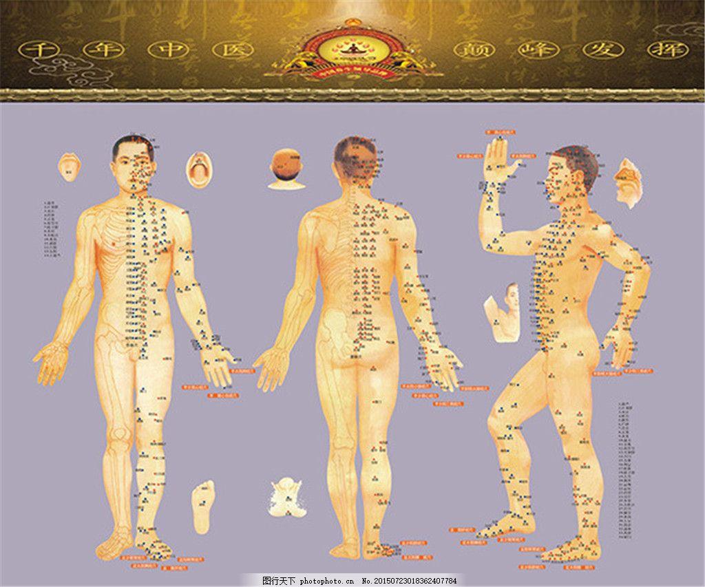 男性人体穴位图解 背部穴位 足部穴位 头部穴位 矢量素材 黄色