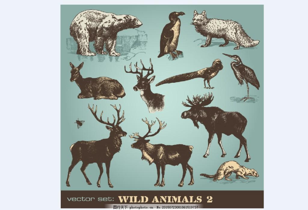 动物剪影 熊 企鹅 鹿 狐狸 动物矢量 白色