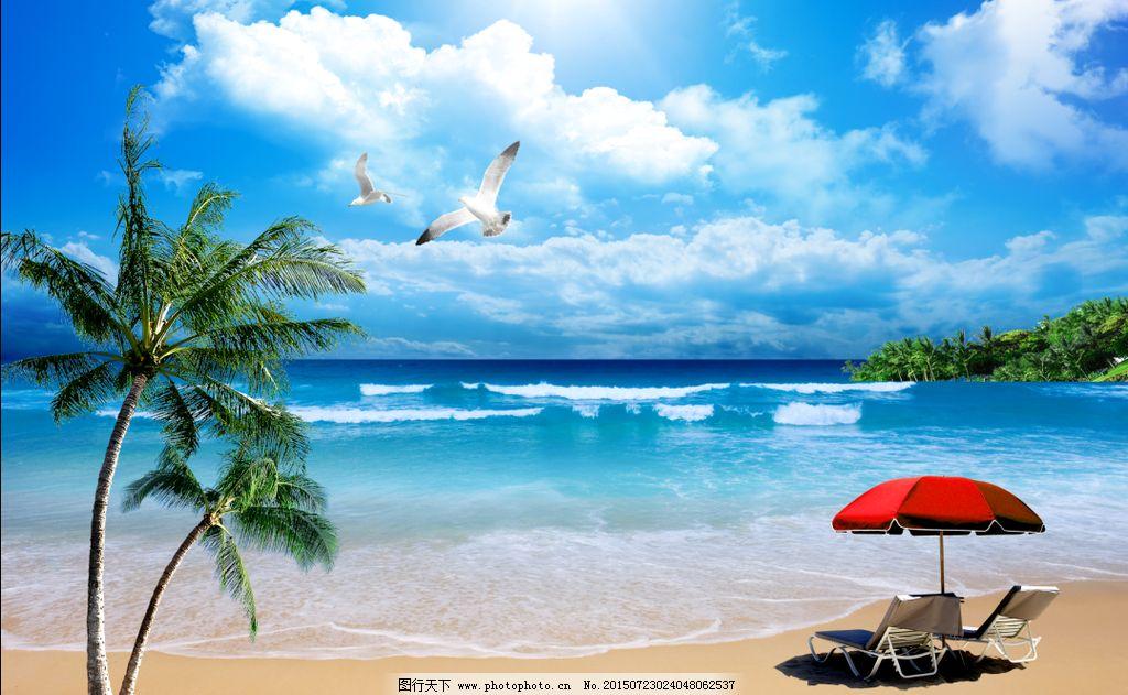 海边蓝天海鸥椰树风景图片