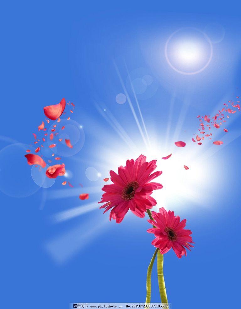 花瓣笔刷形状 光晕图片