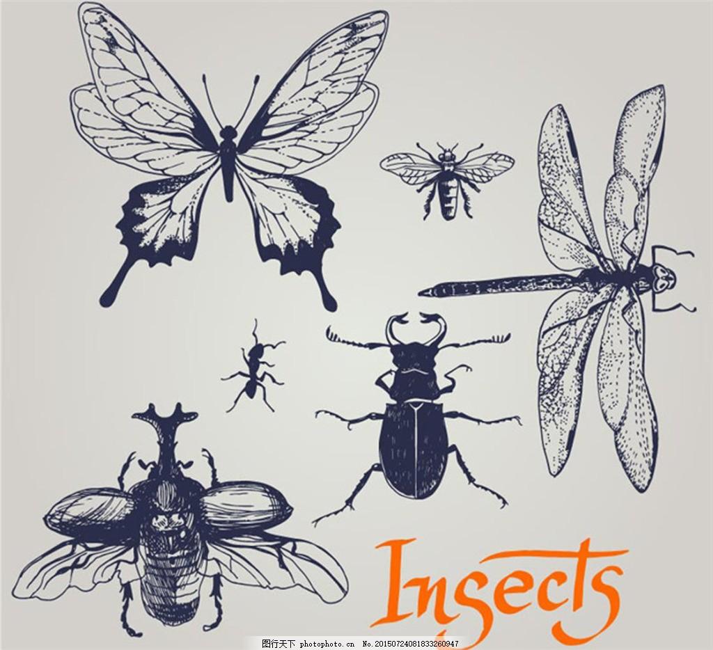 手绘昆虫图片