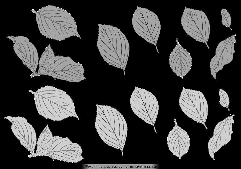 手绘各种树叶线描免费下载 手绘叶子 手绘植物 树叶 线稿 叶子 手绘各