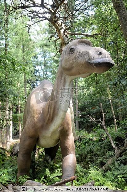 史前 历史 恐龙 爬行动物 灭绝 捕食者 怪物 野生动物 黑色