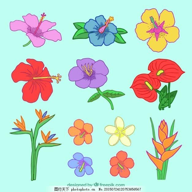 手绘彩色野花