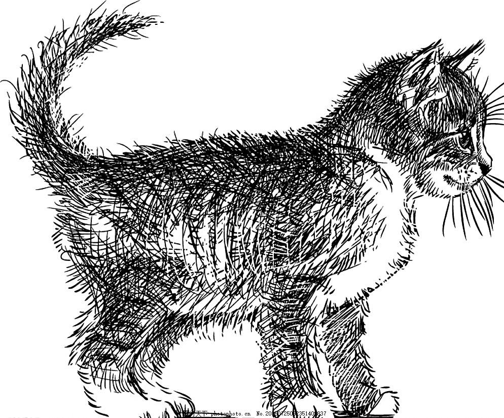 手绘猫咪设计矢量素材 猫咪 小猫 猫 动物 宠物 家畜 手绘 线描 素描
