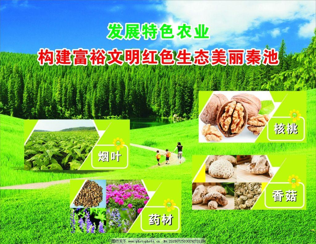 文明 生态农业 发展特色农业