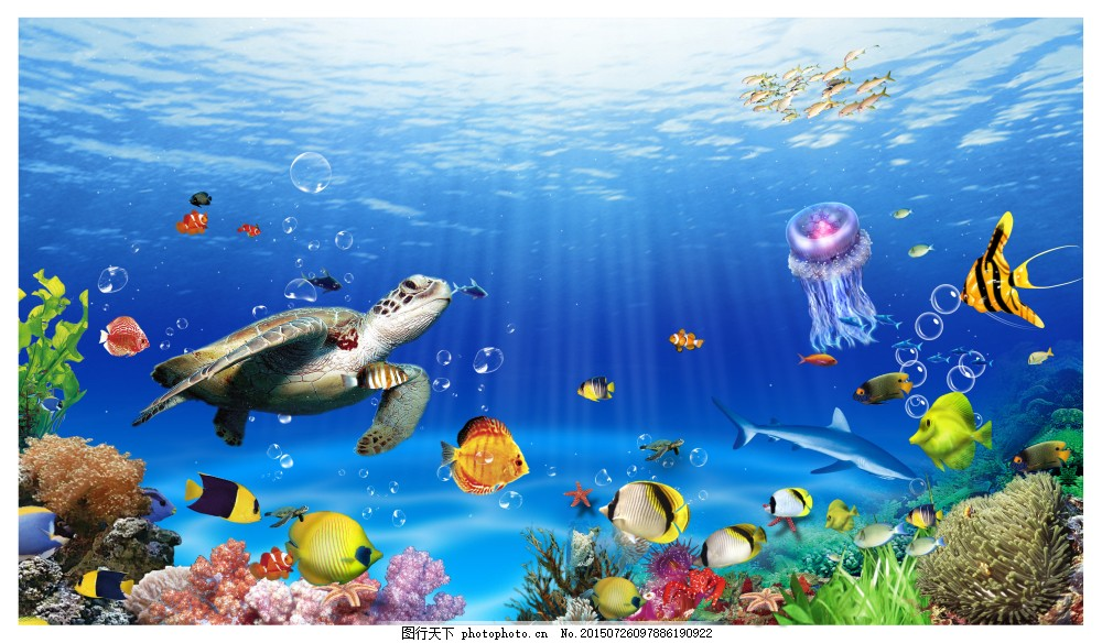 阳光下的海底 热带鱼 珊瑚 蓝色图片