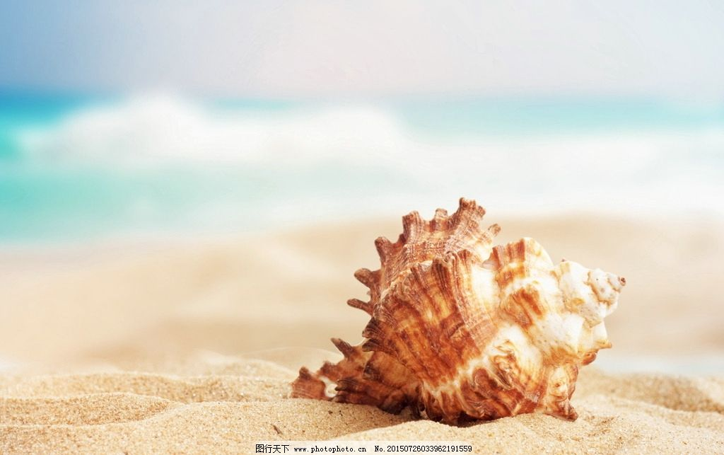唯美 风景 风光 旅行 自然 秦皇岛 大海 海边 海螺 摄影 旅游摄影