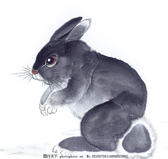 兔子 写意动物画 国画 _0078