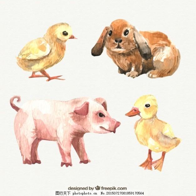 水彩画的农场动物 手 油漆 猪兔 小鸡 手画 彩绘 手绘 白色