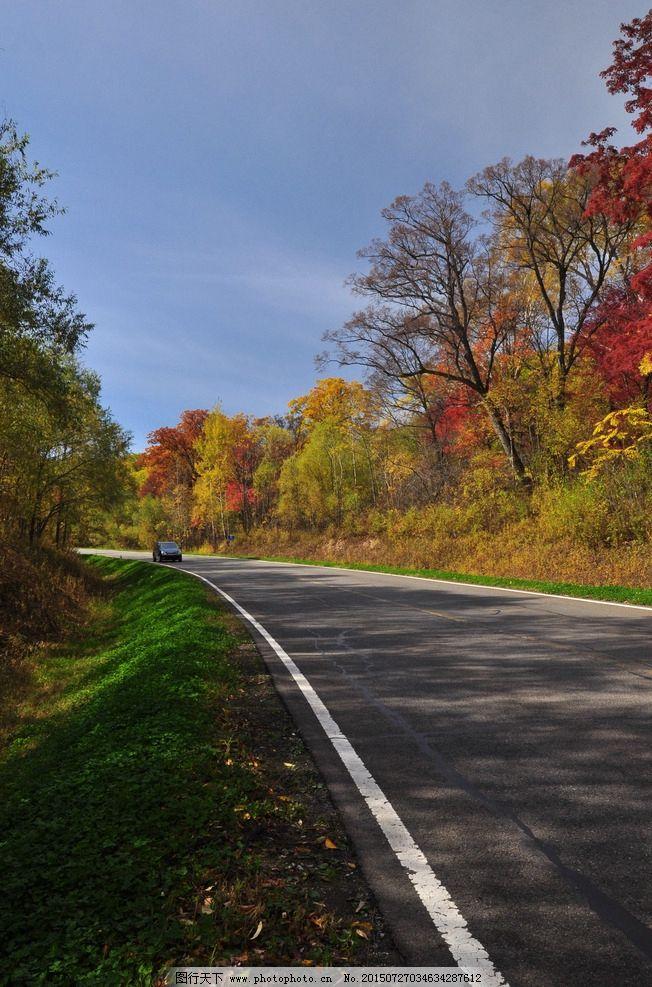 秋天的景色 秋天的森林 森林的秋天 秋景 漂亮的秋天 唯美的秋天