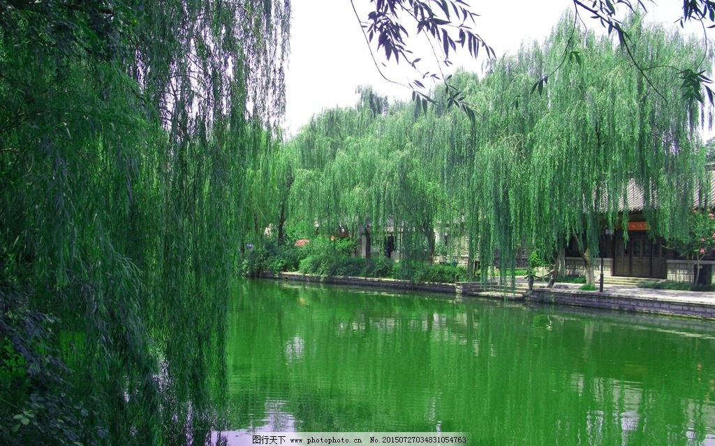 济南大明湖 大明湖风景