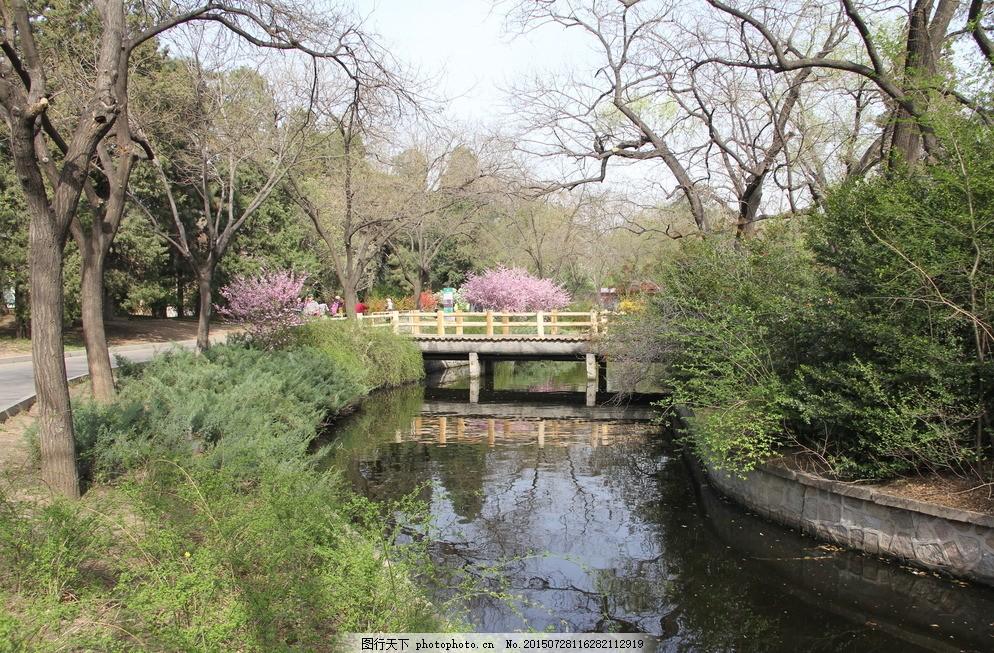 北京动物园河道 小河 小桥 春游动物园 旅游日记 摄影 旅游摄影