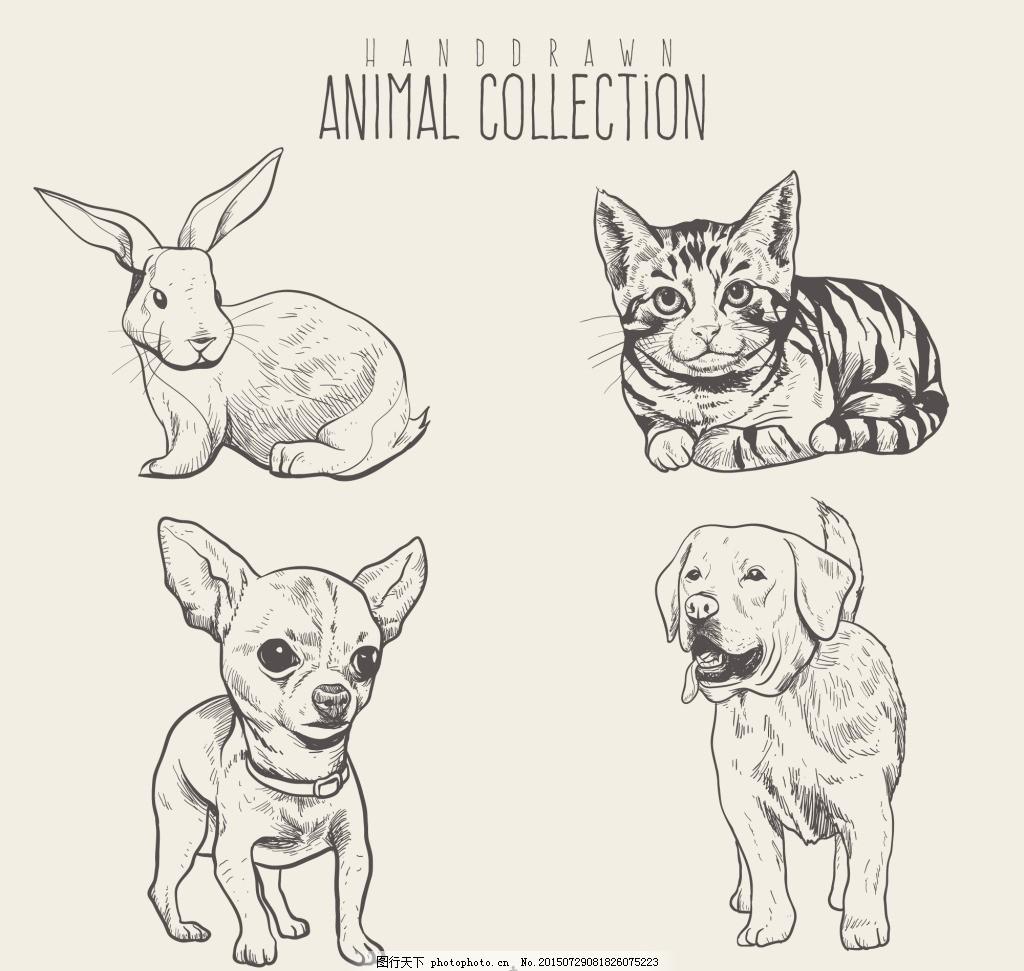 美丽的动物草图素材