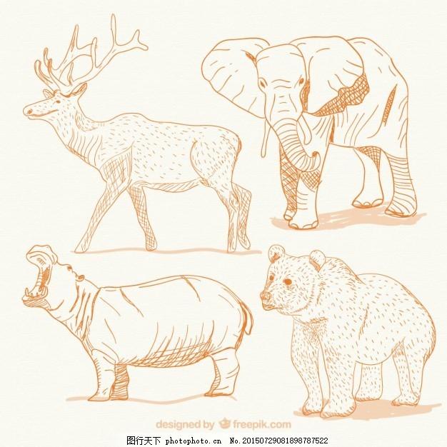 动物 手绘 大象 熊 鹿 绘画 手工绘图 绘制的 野生的 粗略的 河马 ai