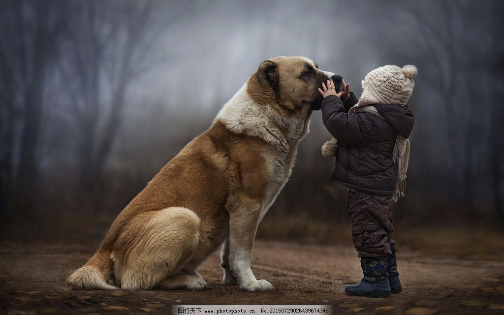 唯美图片免费下载 宠物 小狗 小朋友 宠物 小狗 小朋友 图片素材 风景