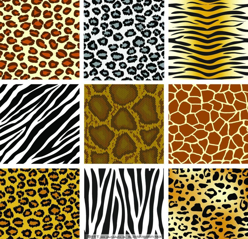 动物皮纹图片