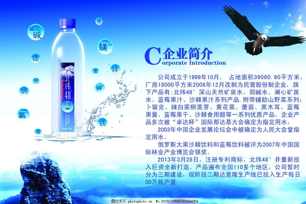 水 矿泉水 鹰 企业简介 矿泉水宣传单 设计 广告设计 画册设计 300dpi