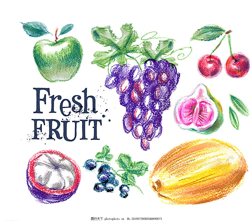 手绘水果 葡萄 樱桃 新鲜 矢量 设计 广告设计 eps 白色