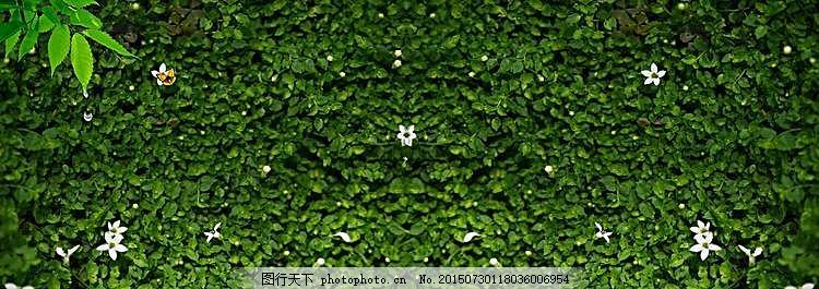 绿草背景墙背景 黑色