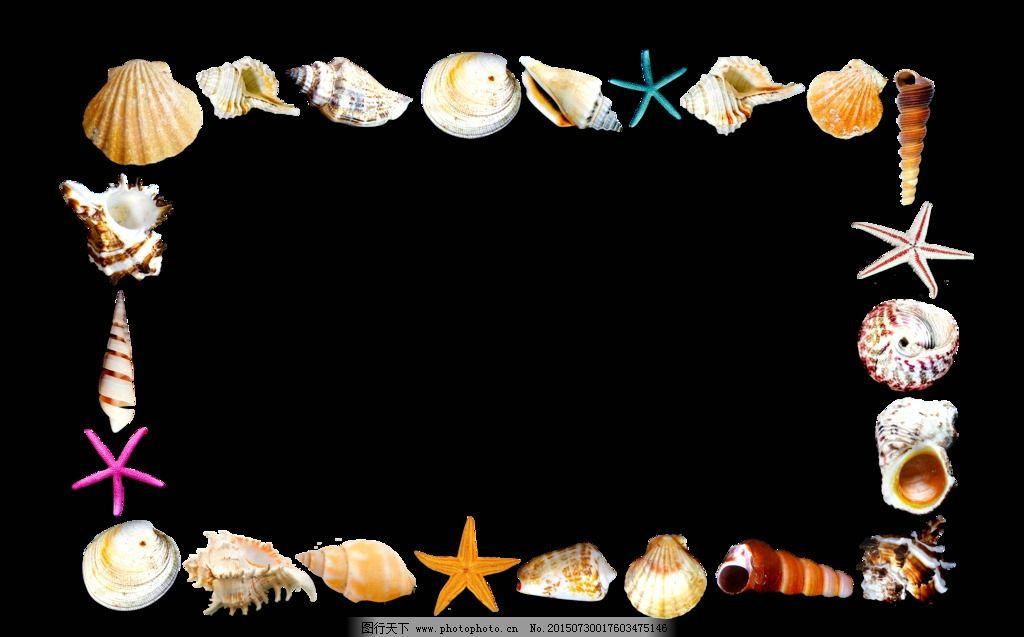 贝壳 边框 相框 海星 海螺 底纹 设计 生物世界 海洋生物 118dpi png图片