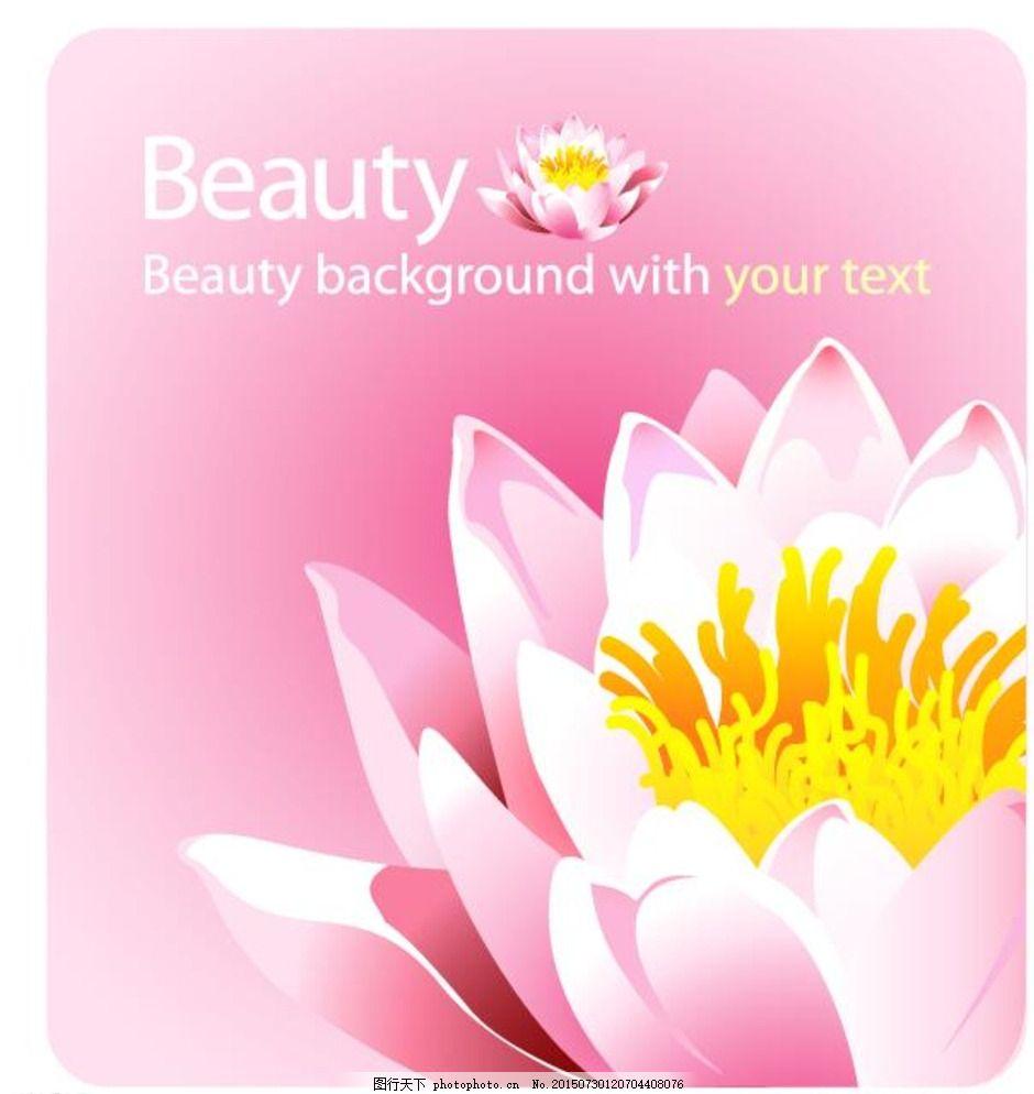粉色睡莲海报背景图片