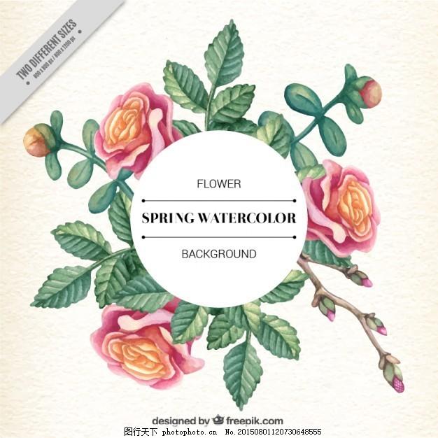 用玫瑰和树叶手绘花卉标签 框 花 水 手 装饰 自然 叶 玫瑰 植物 花卉