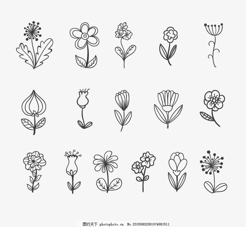 手绘 花朵 花卉 线描 绘画 时尚 黑白线条 白色