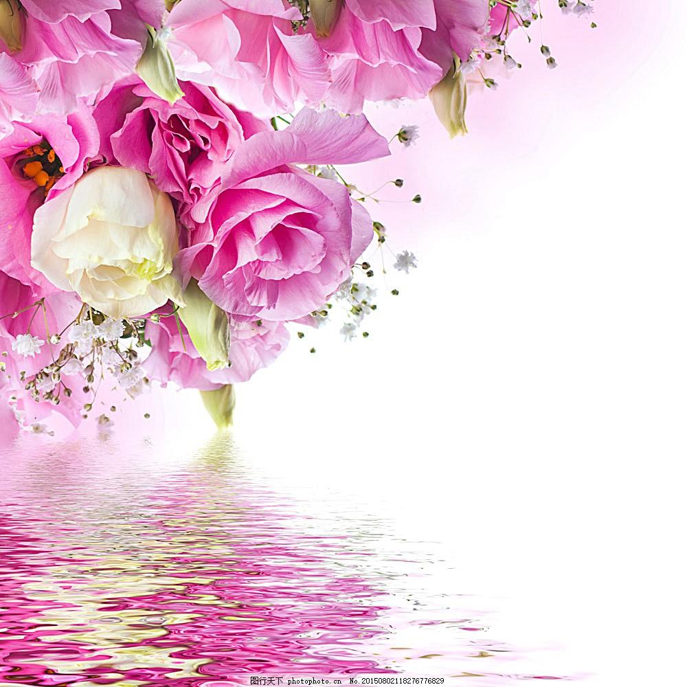 玫瑰花背景边框