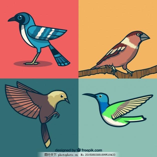 手绘鸟收藏 自然 动物 手画 翅膀 羽毛 鸟类 丛林 颜色 动物园