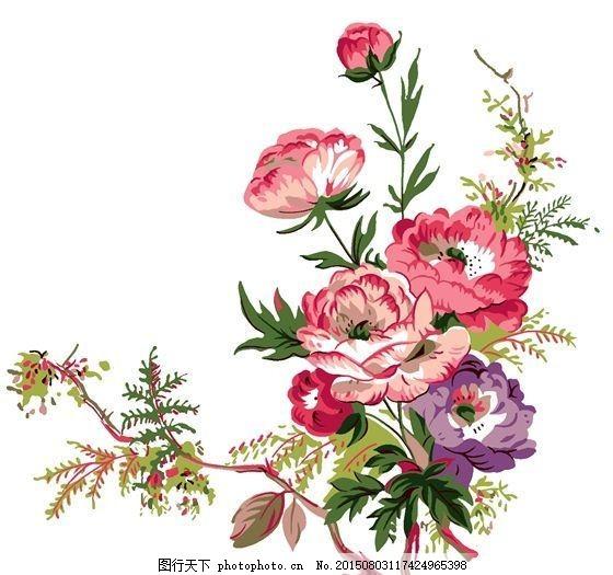 花草插图 花纹图案_0297图片